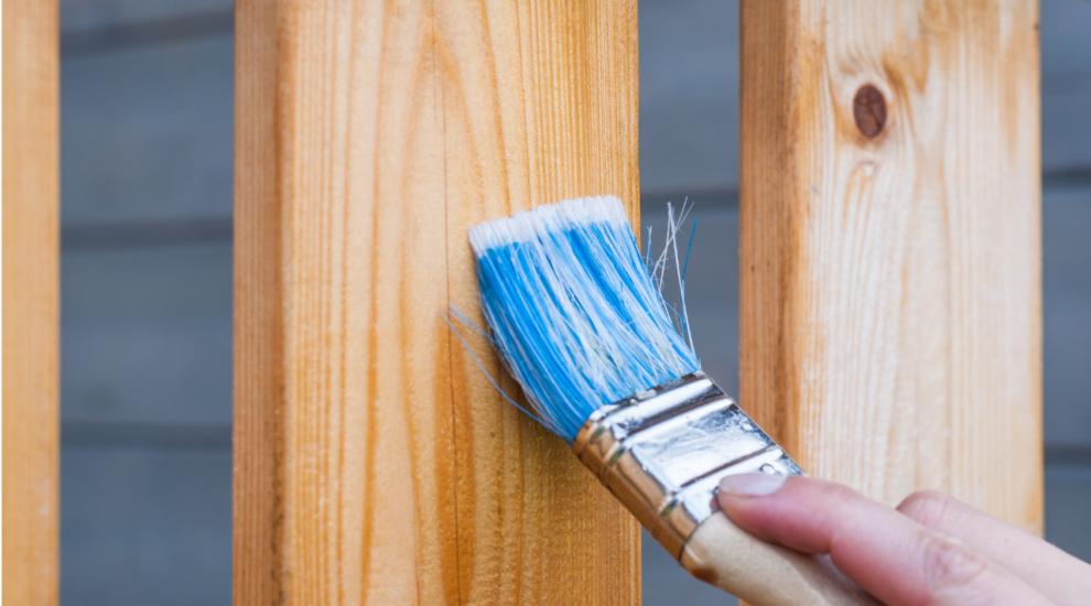 (P) Top 5 motive pentru care sa alegi un gard de lemn
