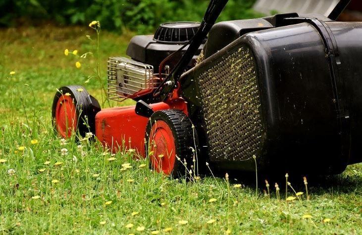 (P) Maşini de tuns iarba electrice vs. benzină: avantaje  dezavantaje