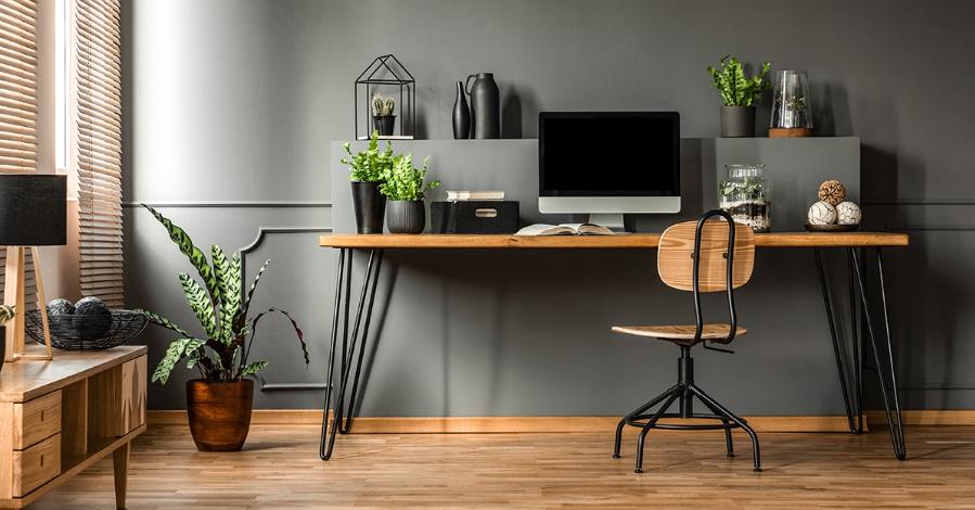 (P) 5 lucruri esențiale de care ai nevoie când lucrezi de acasă