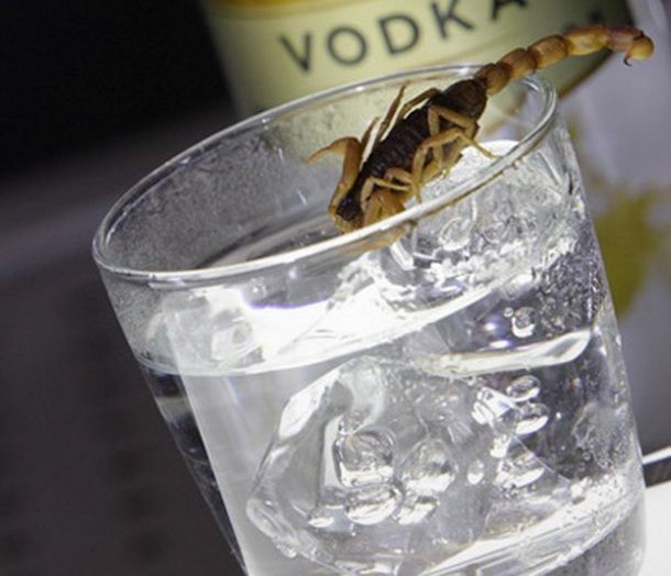 Vodka cu arome neobisnuite. Ai incerca un cocktail cu gust de scorpion?