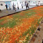 Cea mai mare lasagna din lume. Vezi cat cantareste