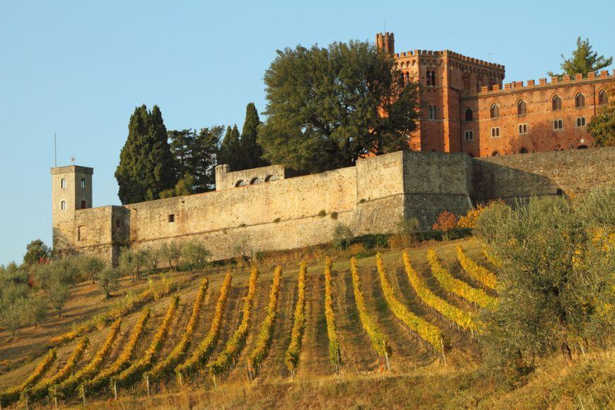 Acestea sunt cele mai bune vinuri italiene. Le recomanda cel mai mare somelier din peninsula
