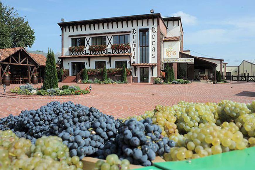 5 vinuri de la Cramele Recas de savurat pe timp de vara