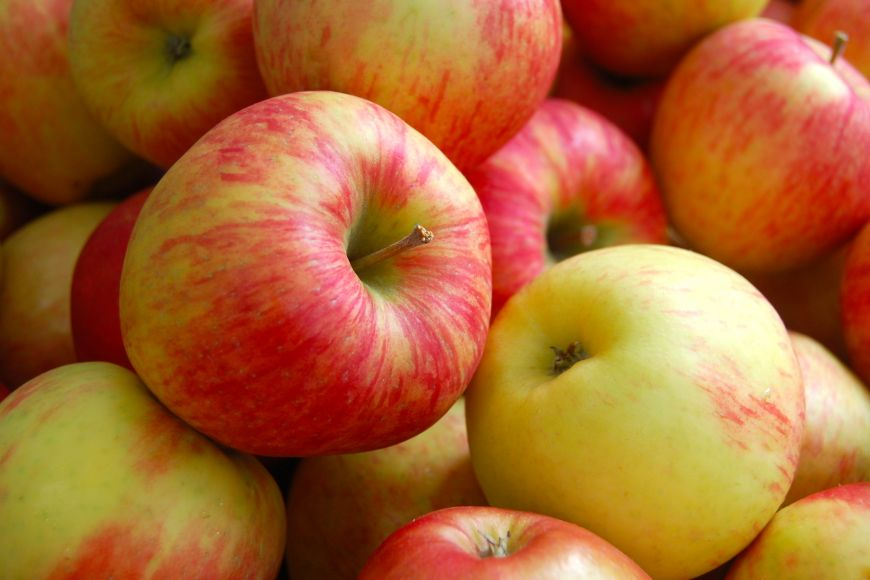 10 alimente excelente pentru metabolism