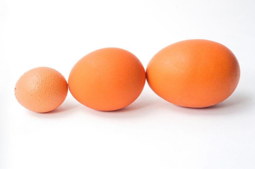 dimensiunea oului de cernagilis detoxifiere ultrarapida