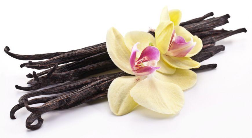 Ce nu stiai despre vanilie, cea mai scumpa mirodenie dupa sofran