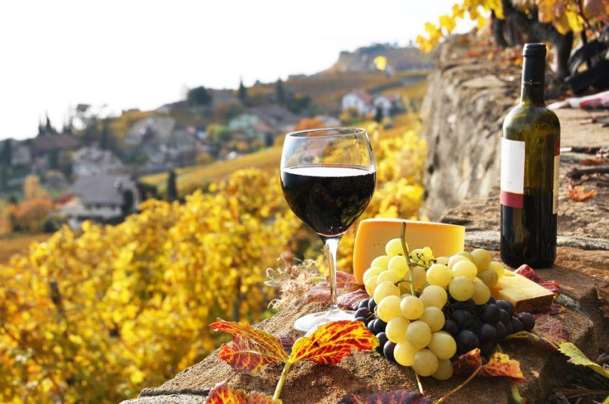 Romania, noul Bordeaux al Europei. 5 domenii viticole in care sa-ti faci vacanta vara asta