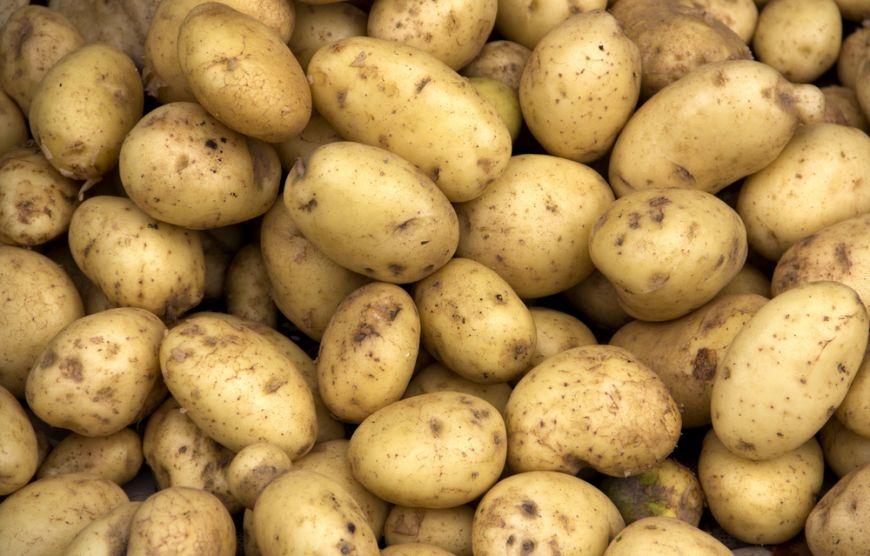Romanii, fruntasi in Europa la consumul de cartofi. Un sfert din cantitate este de proasta calitate