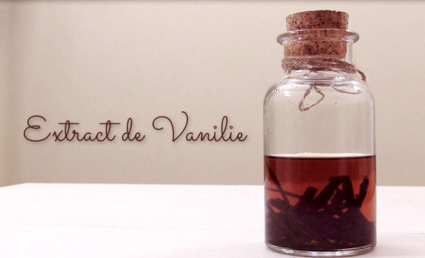 How To Video: cum sa faci extract de vanilie