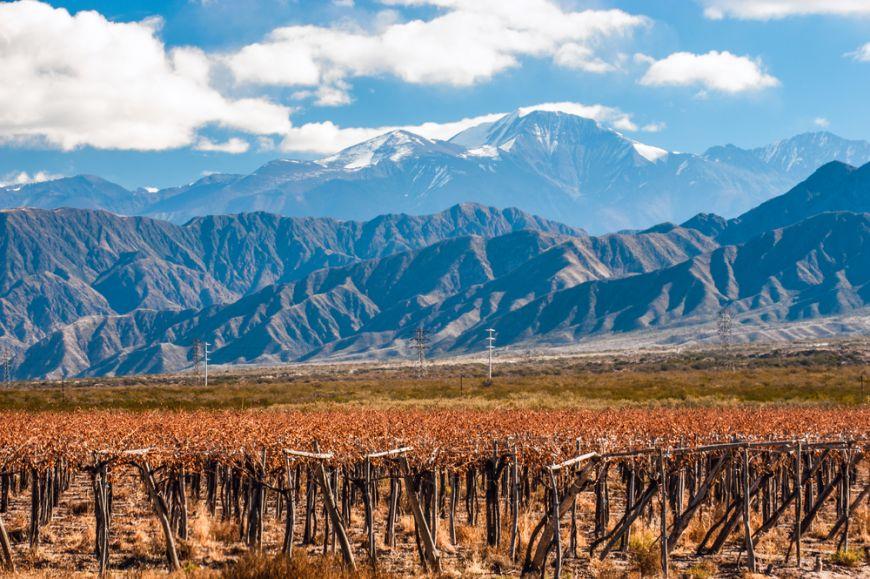 Are podgorii situate la cele mai mari altitudini din lume. Ghid complet despre vinurile din Argentina