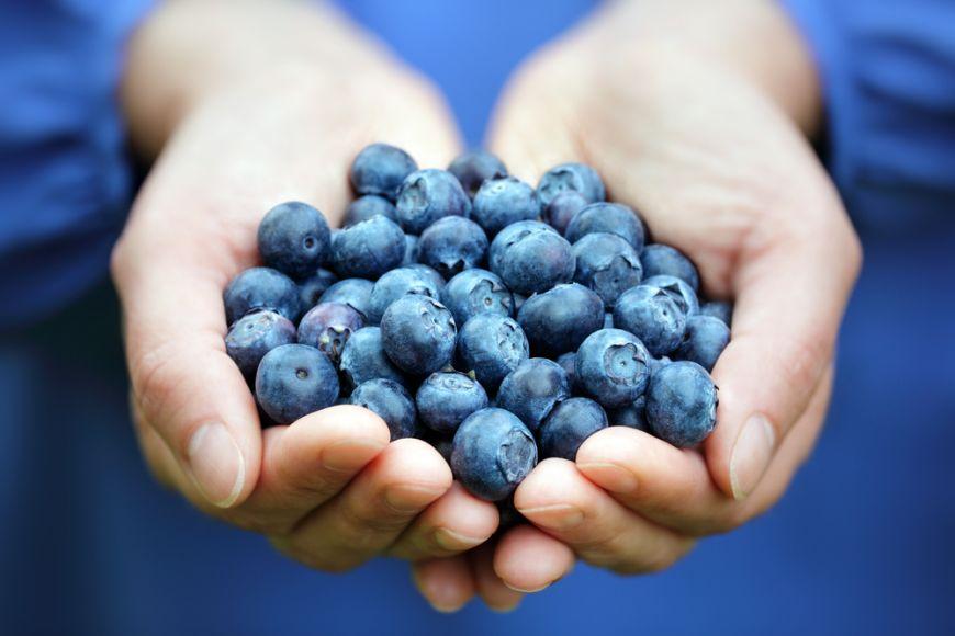 Antioxidantii. Tu stii cine lupta zi de zi pentru viata ta?