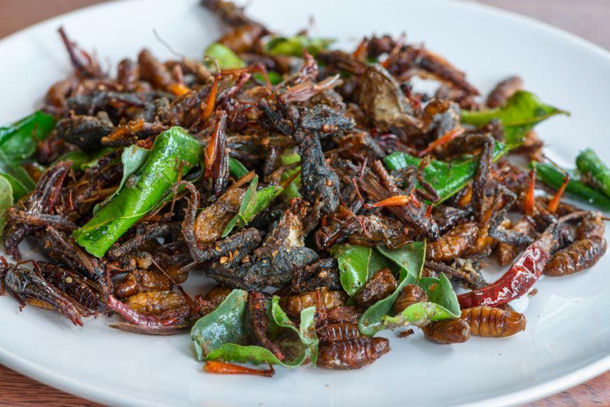 Insectele sunt mai hrănitoare decât carnea de vită și de pui! Ce spun specialiștii de la Oxford?