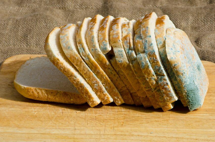 Cat de periculoasa este painea mucegaita. Cum poti sa o pastrezi proaspata mai mult timp