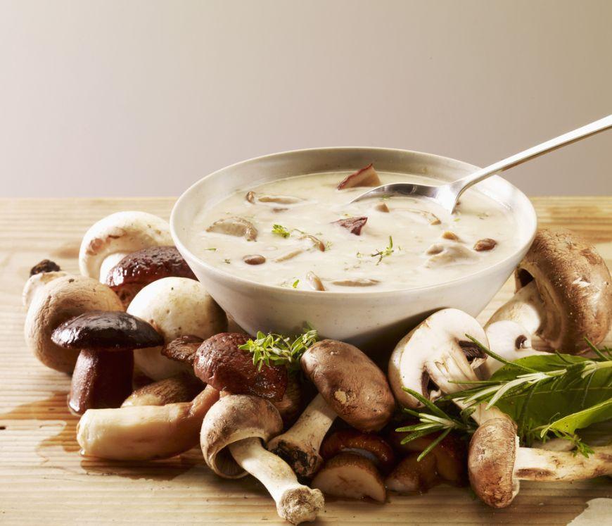 Cercetătorii spun că ciupercile asigură o imunitate de fier! Cum te poate ajuta consumul acestora?