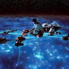 Life of Pi: James Cameron s-a inchinat in fata filmului: Este o capodopera. De ce au pariat pe el 100 de milioane de $ studiourile Fox