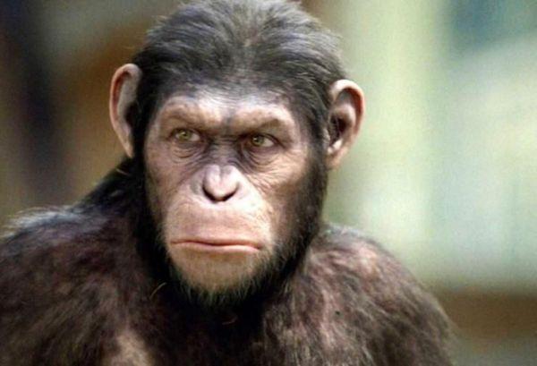Andy Serkis: actorul care a creat personaje legendare ca Gollum sau Caesar, va debuta ca regizor: cat de intunecat va fi noul film The Jungle Book