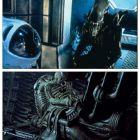 Cea mai infricosatoare creatura se intoarce: regizorul Neil Blomkamp, cunoscut pentru District 9 , va lansa un nou film Alien. Ce a declarat Sigourney Weaver despre o posibila intoarcere in franciza