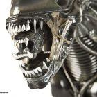 Sigourney Weaver face dezvaluiri despre  Alien . Ridley Scott ar fi renuntat la Alien 3 dupa ce a aflat ca apare  Aliens vs. Predator