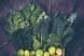 (P) Care sunt vitaminele și mineralele esențiale pentru organism?
