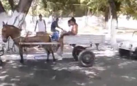 Cum sa faci o parcare paralela cu o caruta trasa de magar! VIDEO