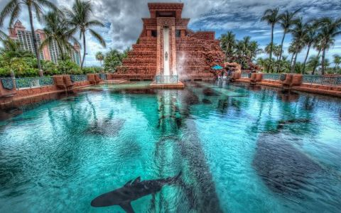 Parcul in care turistii aluneca printr-un tunel inconjurat de rechini