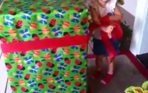 O fetita de trei ani a avut parte de cea mai frumoasa surpriza de ziua ei de nastere. Ce cadou se afla in cutie: VIDEO
