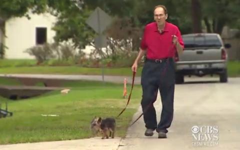 A iesit la plimbare cu cainii si a avut parte de o surpriza uriasa. Ce i s-a intamplat unui barbat bolnav de leucemie