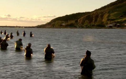 Pescarii se aliniaza in apa, iar ce se intampla cateva momente mai tarziu este uimitor. Imagini rare - VIDEO