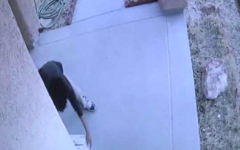 Un hot a furat dintr-o casa, dar camerele au surprins totul. Ce a gasit in cutie l-a facut sa regrete