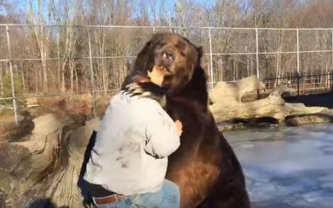 A intrat in cusca unui urs imens, iar ce a urmat a devenit viral. Ce s-a intamplat cu barbatul