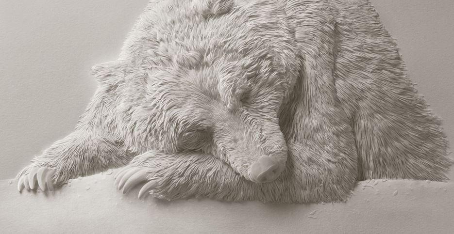 Pare un urs polar, dar daca dai zoom vei observa un detaliu greu de crezut. Ce apare in imagine