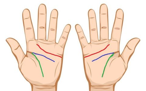 Asaza-ti mainile una langa alta. Ce semnificatie au liniile din palma si ce se intampla daca se aliniaza perfect