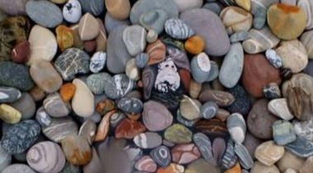 Pare o gramada de pietre, dar in imagine este cu totul altceva. Ce observi daca privesti cu foarte mare atentie