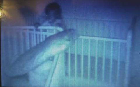 Cateva saptamani la rand a auzit zgomote ciudate in camera copiilor. Ce a descoperit tatal cand s-a uitat pe imagini