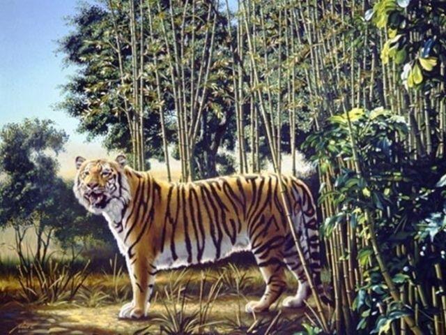 A fost desemnat cel mai greu puzzle de pana acum. Tu vezi cel de-al doilea tigru in imagine?