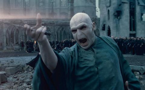 Putini sunt cei care nu-l stiu pe Lordul Cap-de-Mort din  Harry Potter . Cum arata insa actorul care a jucat acest rol