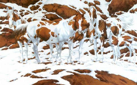 Este considerat unul dintre cele mai dificile teste. Tu cati cai vezi in aceasta imagine?