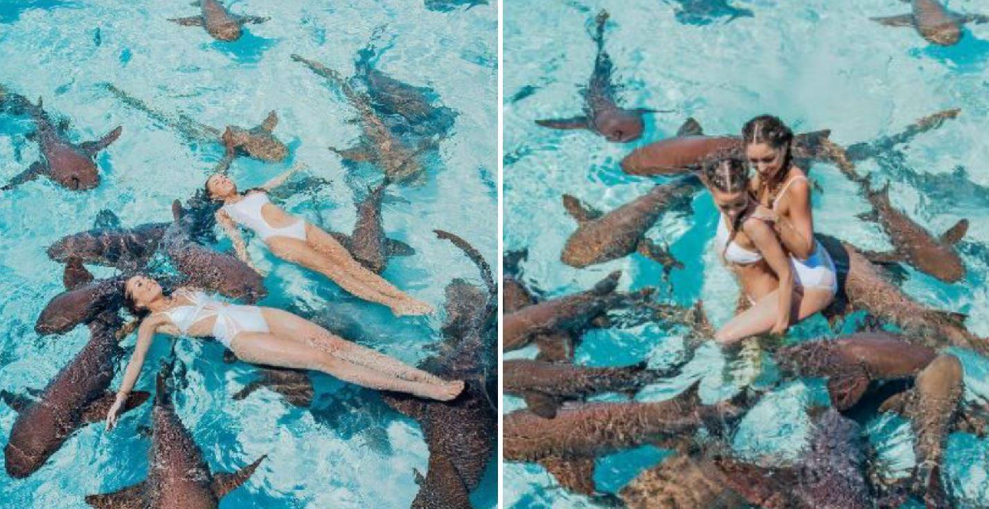 Nu au stiu ce sa priveasca mai intai: modelele superbe sau rechinii. Imaginile care au facut inconjurul internetului