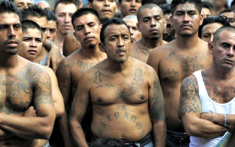 Greseala fatala pentru cei mai macabri gangsteri din lume! Donald Trump vrea sa distruga celebra banda MS-13