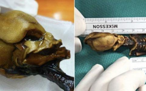 Oamenii de stiinta au aflat in sfarsit secretul din spatele  Mumiei extraterestre