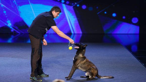 Romanii au talent 2018: Attila Toth - Dresaj canin