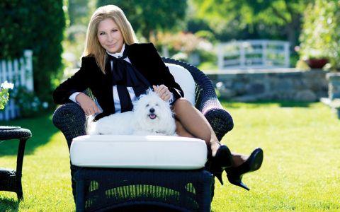 Celebrități care și-au clonat animalele de companie pentru nu le pierde pentru totdeauna