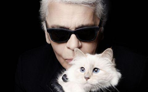 Pisica lui Karl Lagerfeld a devenit și mai bogată în ultimii ani. Ce avere are