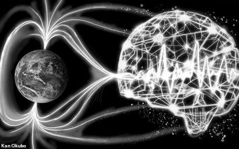 YODA Inteligența Artificială poate prezice cutremurele! Cum va reuși să salveze vieți