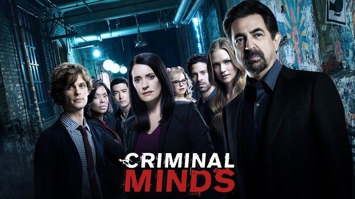Al 15-lea sezon al serialului bdquo;Criminal Minds  va fi și ultimul. Ce alt serial ai putea urmări în loc