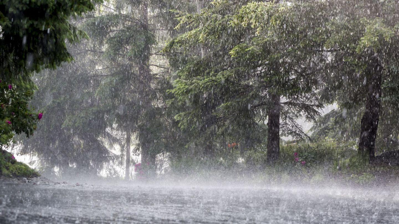 Prognoza meteo: Cum se anunță vremea pentru astăzi