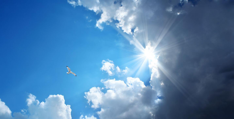 Prognoza meteo: Temperaturi de primăvară