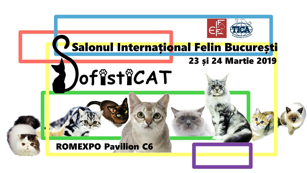 SofistiCAT ndash; Salonul Internațional Felin București