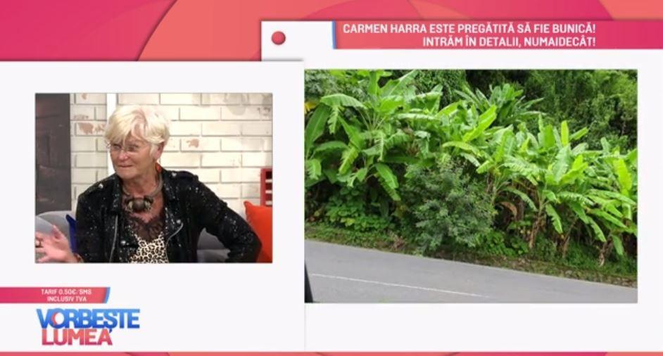 VIDEO Monica Tatoiu, povești din vacanță