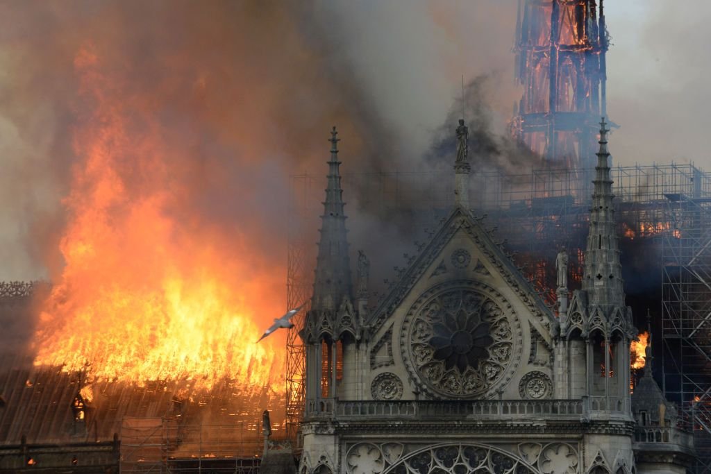 E ca și cum ai privi cum îți moare cineva drag . Reacția celebrităților față de incendiul de la Notre Dame